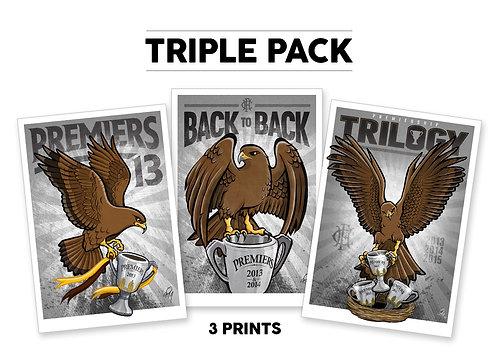 Hawks Premiership Triple Pack 2013,14,15 Posters