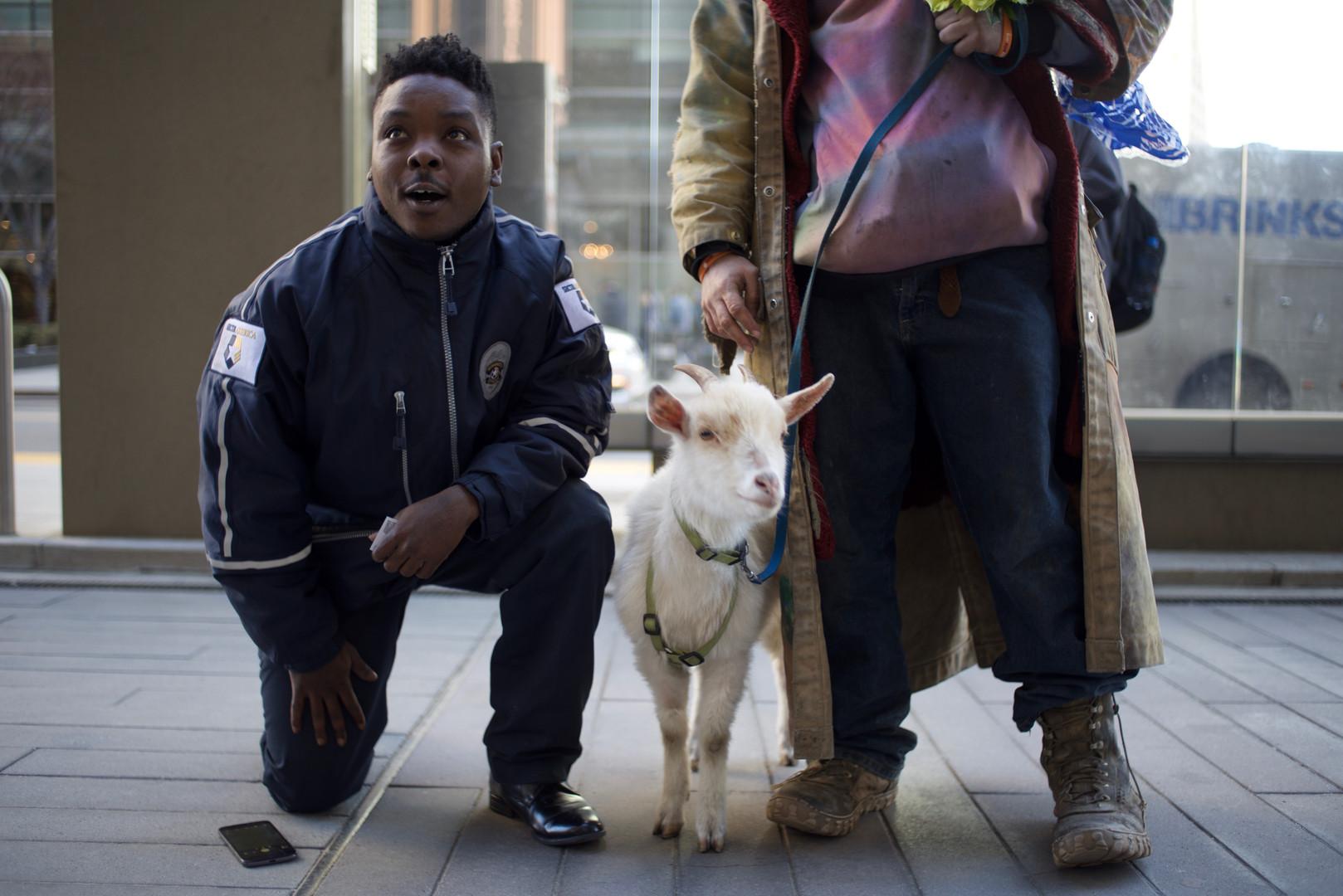 Guard, Goat, & Grifter