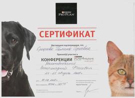 Сертификат ГС 2.jpeg