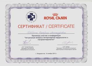 добычина сертификат 3.jpeg