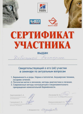 добычина сертификат  2.jpeg
