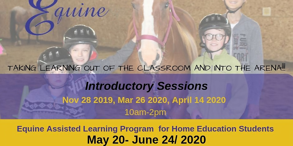 Home Education- Introductory into Equine Assisted Learning Sessions