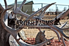 cartier farms.jpg