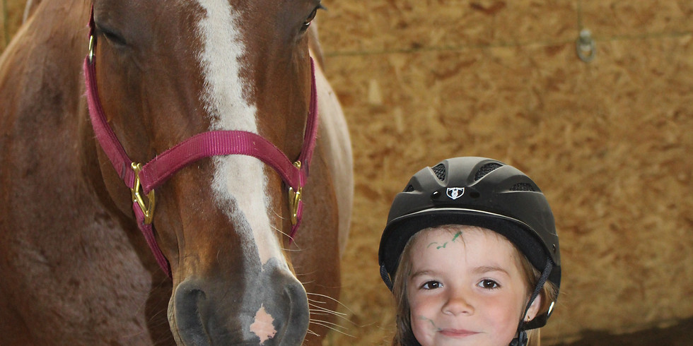 Equine Assisted Learning Summer Programs July 16,17,18