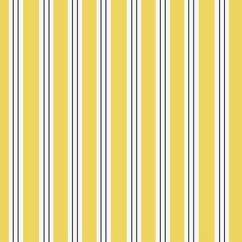 A Sunny Stripe