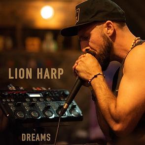 LION HARP 2018.jpg