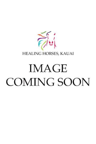 Healing Horses T-Shirt - Womens