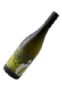Rotgipfler Thörlberg Weingut Österreicher aus Pfaffstätten