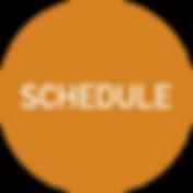 schedule with satsuma energetics, lafayette la energy healing