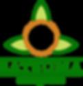 satsuma energetics, lafayette la energy healing and wellness