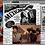 Thumbnail: Mercenarios da  Morte