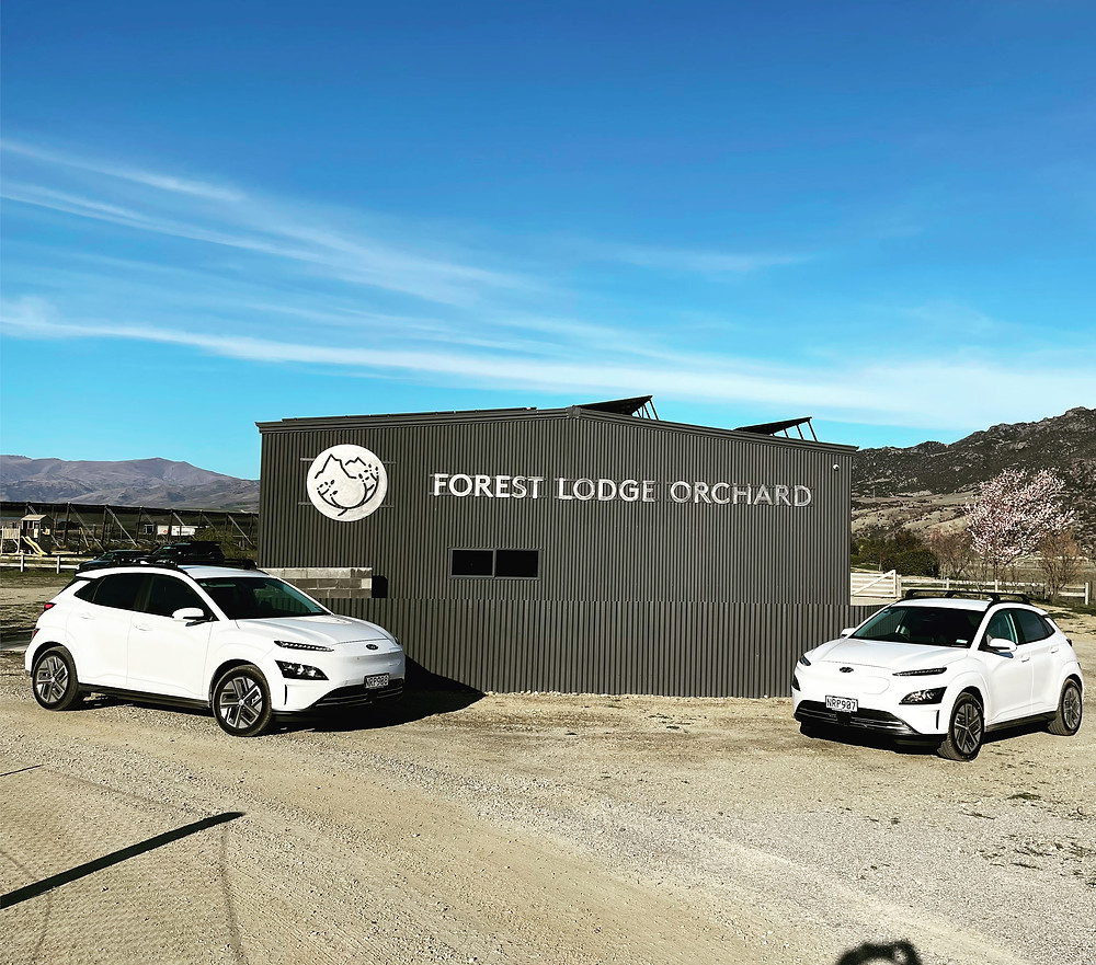 Two white Electric Hyundai Konas infront of Forest Lodge Orchard sign