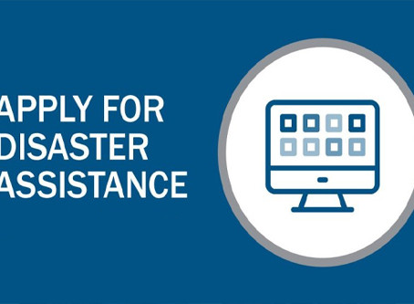 Financial Assistance for Small Business Owners Affected by COVID-19: Disaster Assistance Payments