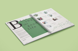 Bula Catalog Design