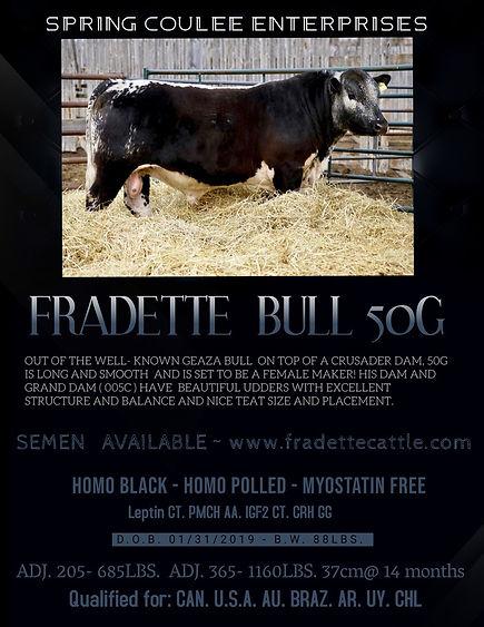 50G Bull Poster.jpg