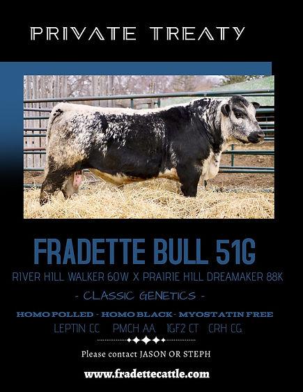 51G Bull Poster.jpg