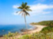 Vagator Beach.jpg