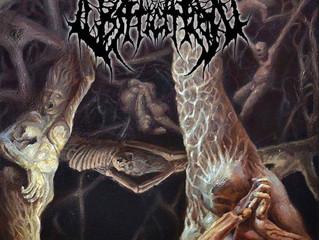 Album Artwork for Ossification Released