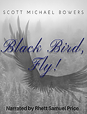 Black_Bird_Fly_230x304.png