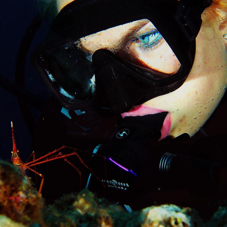 Corso Sub Open Water Diver 1 livello