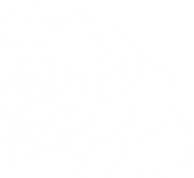 rose_edited_edited.png