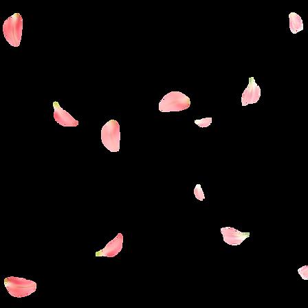 kisspng-rose-petal-flower-rose-petals-5a