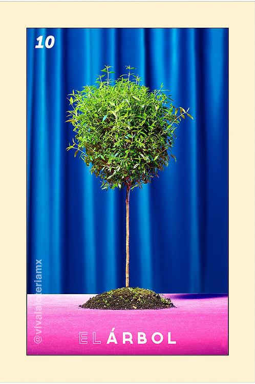 10. El Árbol
