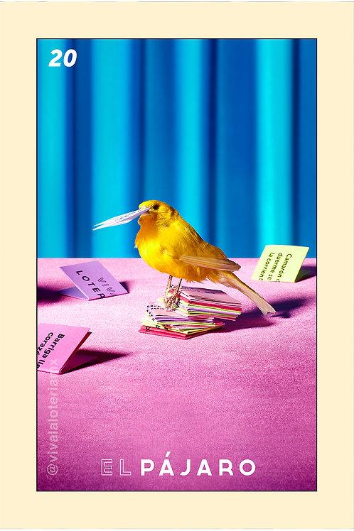 20. El Pájaro