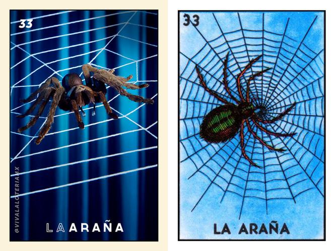 ARAÑA_Orginal_New.jpg