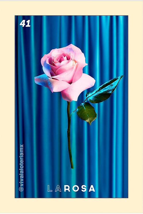 41. La Rosa