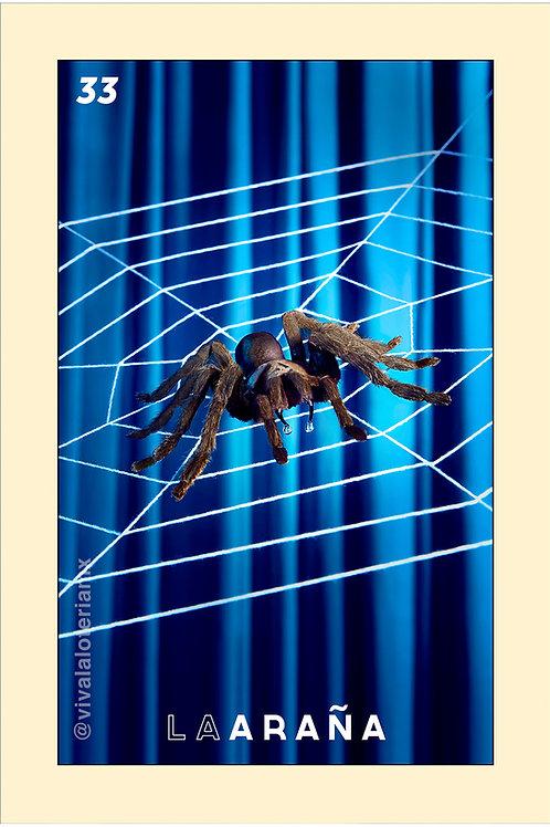 33. La Araña