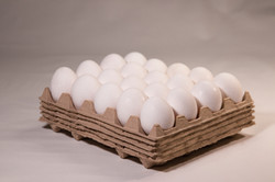 RE-leaf eggs pad