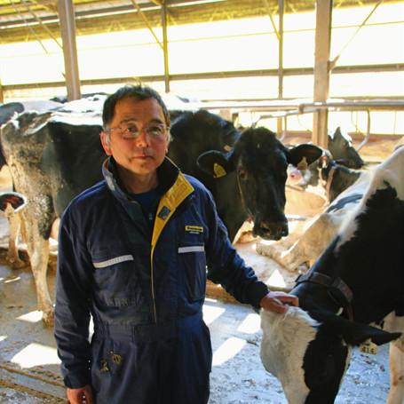 自動搾乳ロボット導入 空き時間は牛のケアや観察に