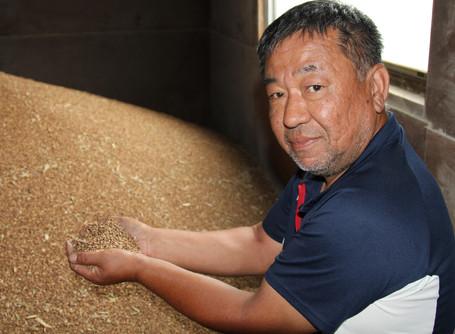もち麦「ダイシモチ」の販路開拓へ