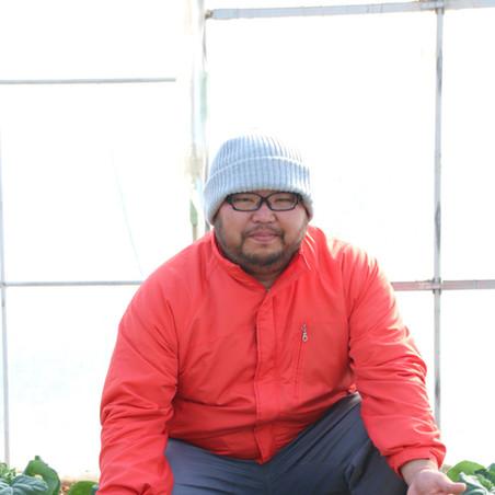 野菜を少量多品目で 農薬と化肥に頼らず
