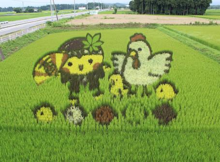田んぼアート制作 農業・観光・地域の活性化に