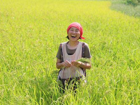 農業で異文化交流