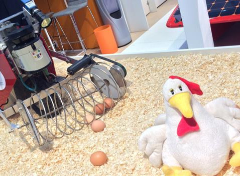 Robots enter the chicken shed