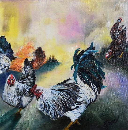 Sunrise Chickens