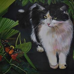 Costa Rican Cat.jpg