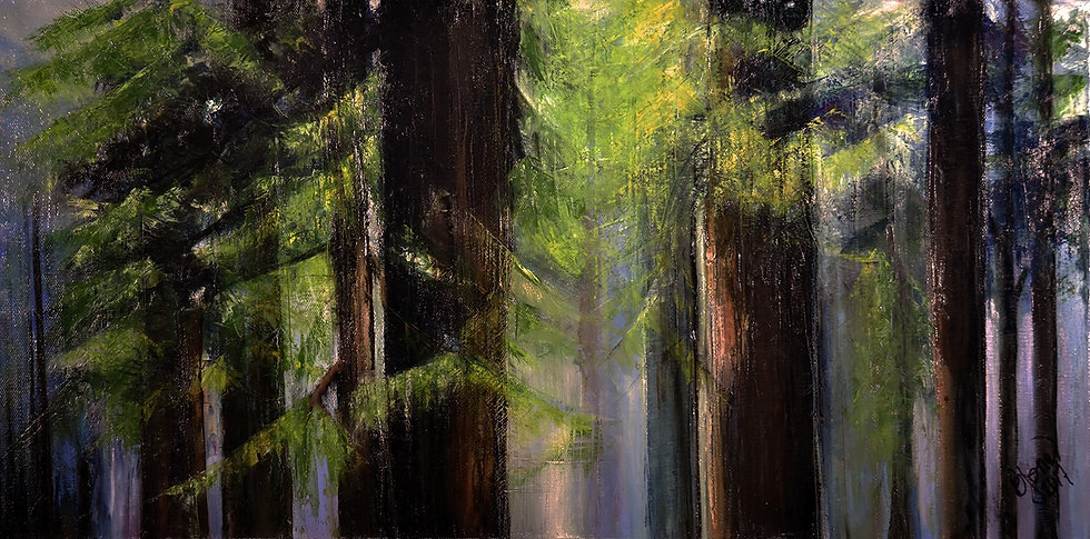 Daylight in the Forest