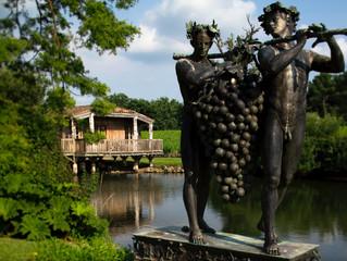 5 интересных фактов о вине и виноделии от отеля Les Sourсes de Caudalie в Бордо