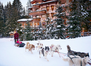 Скиджоринг и экспедиции на собачьих упряжках – les Airelles Courchevel открывает зимний сезон