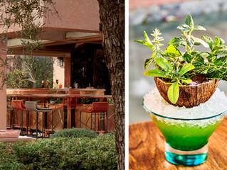 Miss Green – «звезда» летних коктейлей ресторана Le Jardin Royal Mansour Marrakech у вас дома