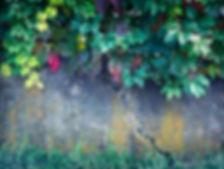 TGM homepage image EDIT.jpg