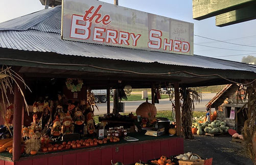 Loftus Farms Berry Shed