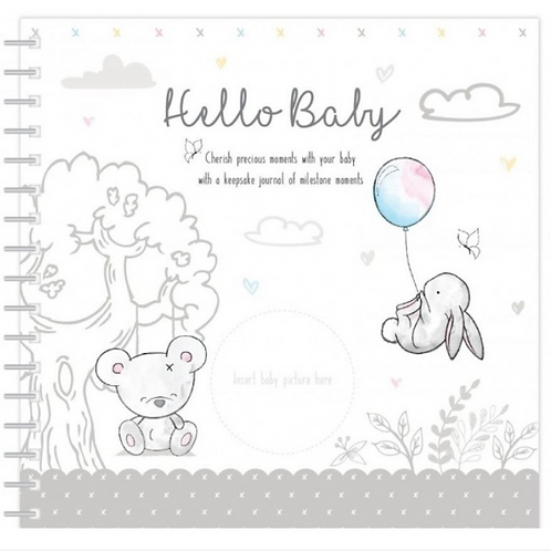 Hugs and Kisses  Baby Book