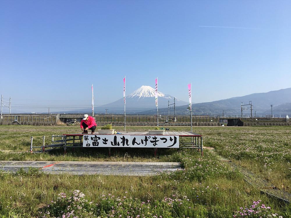 富士山れんげまつり