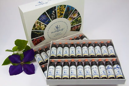 bach-flower-therapy-1543107_1280.jpg