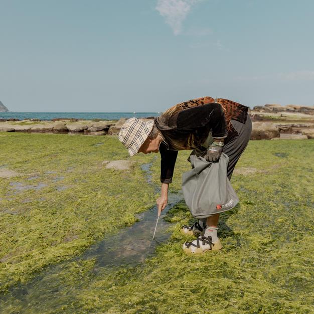 當地居民維持原本生活入園採海菜。